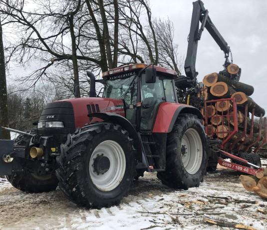 Holz Schlägerung